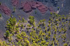 Crater La Palma San Antonio volcano Fuencaliente - stock photo