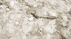 Walk along the cliff Stock Footage