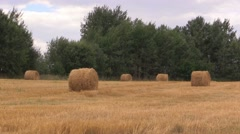Landscape with harvested bales of straw Stock Footage