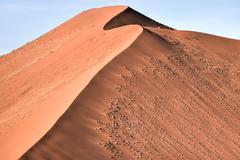 Namib Desert, Namibia - stock photo