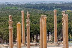 Persepolis ancient pillars Stock Photos