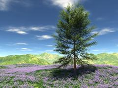 Meadow at hill with one tree - stock illustration