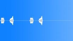 Bird,starling 6 - sound effect