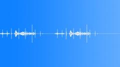 Bird,starling 30 Sound Effect