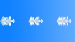 Bird,starling 60 Sound Effect