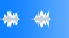 Bird,starling 67 - sound effect
