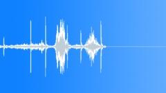 Bird,starling 91 Sound Effect