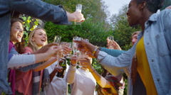 4K Happy group of friends raise glasses for a toast at outdoor party - stock footage