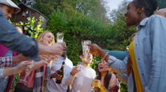 4K Happy group of friends raise glasses for a toast at outdoor party Stock Footage