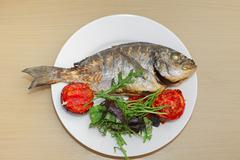 Grilled dorado fish with tomatoes, arugula and basil on white plate Stock Photos