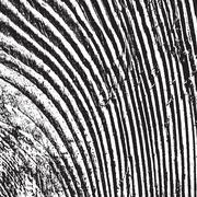 Distressed Wooden 33 - stock illustration