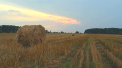 Hay bales on a sunset Stock Footage