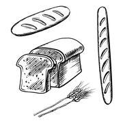 Sliced bread, long loaf and baguette Stock Illustration