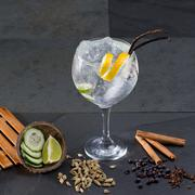 Stock Photo of Gin tonic cocktail with lima cucumber vanilla cloves cardamom