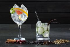 Stock Photo of Gin tonic cocktails with lima cucumber and grapefruit