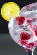 Stock Photo of Gin tonic cocktail with raspberry and ice macro closeup