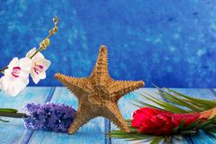starfish with hyacinth flower and white orchid on blue wood - stock photo