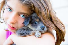 Girl hug a little puppy dog gray hairy chihuahua Stock Photos