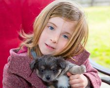 Blond girl hug a gray pyppy chihuahua dog Stock Photos