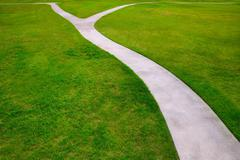 Stock Photo of Garden lawn grass with a two option ways detour