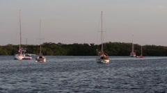 Sailboats at anchor in the Florida Keys Stock Footage