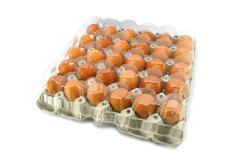 Eggs from chicken farm in the package Stock Photos