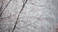 Snow and wind  Stock Footage
