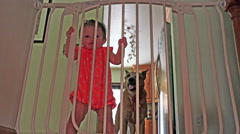 Baby and dog behind safety bars on the stairs. Stock Footage