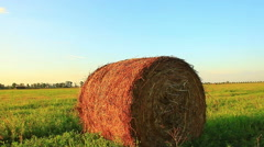 Bale of hay in the field Stock Footage