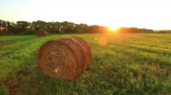 Hay field Stock Footage
