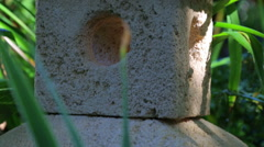 A Japanese stone lantern in the greenery of the park. Stock Footage