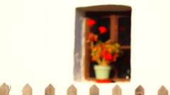 fence and the flower - stock footage
