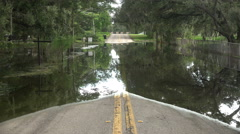 Flooded Road And Trees In Tampa Florida Stock Footage