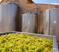 chardonnay winemaking with grapes and tanks - stock photo