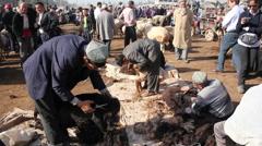 Shearing sheep, Xinjiang Province, China Stock Footage