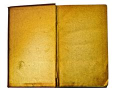 Blank and antique open book - stock photo