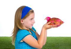 Breeder hens kid girl rancher farmer with chicken chicks Stock Photos