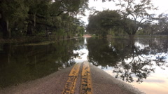 Flooded Street In Florida Reflection And Trees Low Angle Close Up Stock Footage