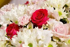Colorful fower background - natural texture of love - Red and Pink Roses - stock photo