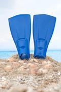 flipper on a sandy beach - stock photo