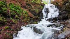 Wonderland. Wonderful waterfall in mystery forest. - stock footage