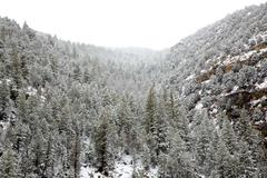 Stock Photo of Nevada USA spring snow in the mountains