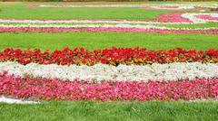 Flowerbed Stock Photos