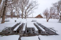 Stock Photo of Nevada USA first snow in the park