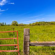 Stock Photo of California meadow ranch in a blue sky spring day