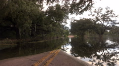 Flooded Street In Florida With Trees And Reflections Stock Footage