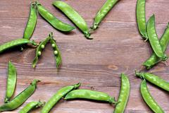 Pods of green peas - stock photo