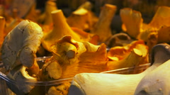 Fresh vegetable shop - stall of girolles mushroom, chaterelle - close up shot Stock Footage