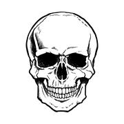 Black and white human skull with jaw Stock Illustration