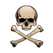 Colored human skull and crossbones - stock illustration